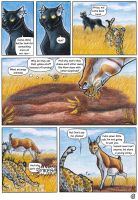 Africa -Page 6 by ARVEN92