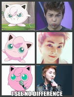 Baozipuff EXO pokemon by SwagSagwa