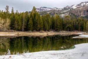 Reflecting On Spring by Daveinwilton