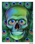 Skull With Peacock Feathers by EricTonArts