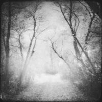 out of reach by intao