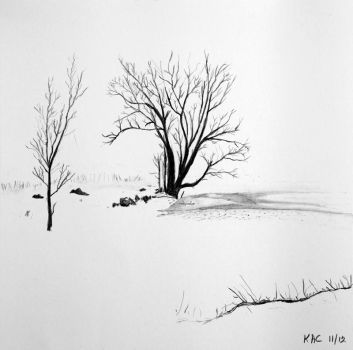 Winter Trees by kennyc