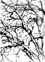 Branches by donteatthefish