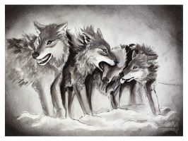 The Pack by ArkyiVolg