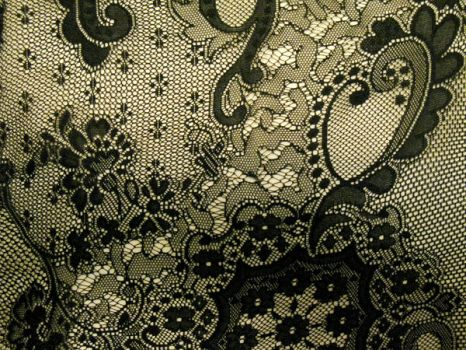 Texture-Black Lace by liz-stock