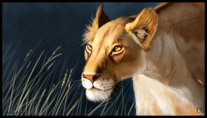 Lioness by ArtofJefferyHebert