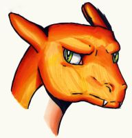 Charizard is not amused by dreameroftheblue