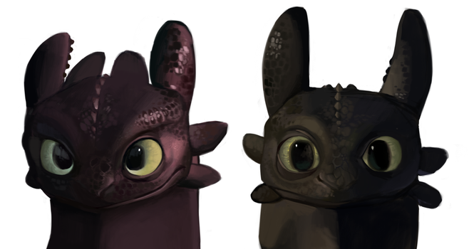 Toothless Studies by laurenedmundson