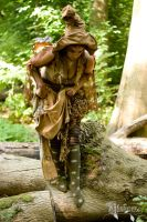 Forest Faery Costume by Laiyla