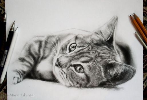 Kitty by 26lisamarie