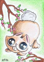 Funny cat Chinese Zodiac Year of the Rabbit by KingZoidLord