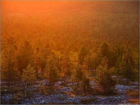Ural Mountains 2014 - 22 by TOMYODA