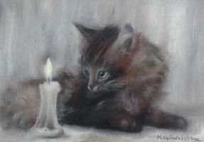 A Cat with a Candle by gokusia