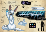 Espial World Design Challenge: Arctic Brushtail by Lazy-a-Ile