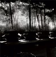 Incense by Wilton-Wong