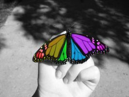 Color Splash Butterfly by MaliceUmbra
