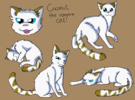 Coconut Doodles~ by Seiishin