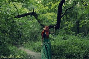 Into the forest by NataliaLeFay