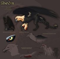 Reference sheet - Shedir by Autlaw