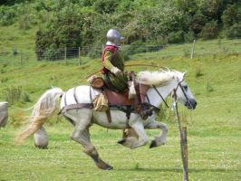 Border Reiver 34 by Axy-stock
