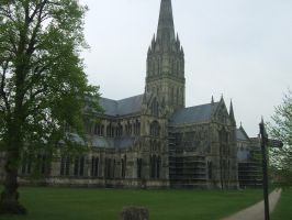 Salisbury Cathedral by monikaholloway