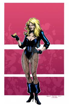 Black Canary - Digital Colors by superleezard