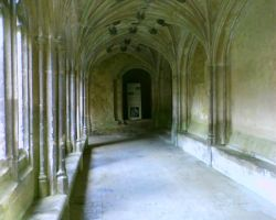 Lacock Abbey 3 by RSmales