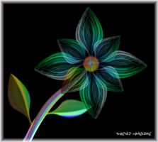 Rainbow Flower by TwistedWhiskers