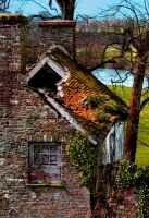 Dereliction by nectar666