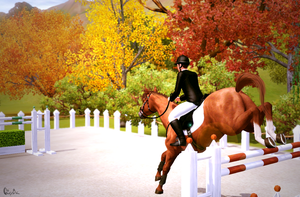 Showjumping 3 - Picture TS3 by Gipsik