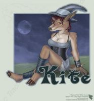 Kite - FB Badge by Ulario
