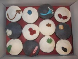 Microbe cupcakes 1 by recycledrapunzel