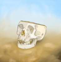 A Skull by ManMadeOfGold
