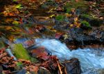 Waters of Fall by Kailean