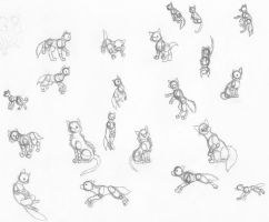 Cats and more poses by Rika-Katana