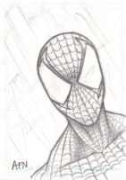 Spiderman Sketch Card by Nortedesigns