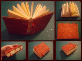 Little red book by Swirlything