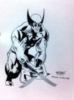 Wolverine crouch NYCC 2011 by ScottCohn