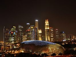 Singapore Night Scene by nordfold