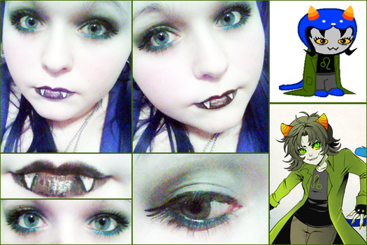 Nepeta Leijon Inspired Makeup by DERPPPPPPPPP