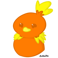 Torchic by sonnio