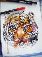 Bengal Tiger WIP by FinchFight