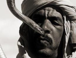 Snake and Charmer by wilmil