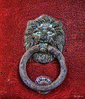 Lion door by CharlieMerci