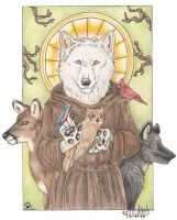 St. Francis of Assisi by selunca