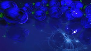 Blue Rosez 2 by TylerXy
