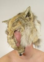 Coyote Mask by wylieblais