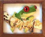 Red-eyed tree frog by python2123