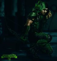 The Green Arrow. by spidermonkey23