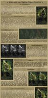 Making of: Know your Forest by Ranarh